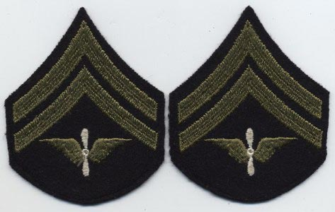 Pilot Wings Pin Meaning